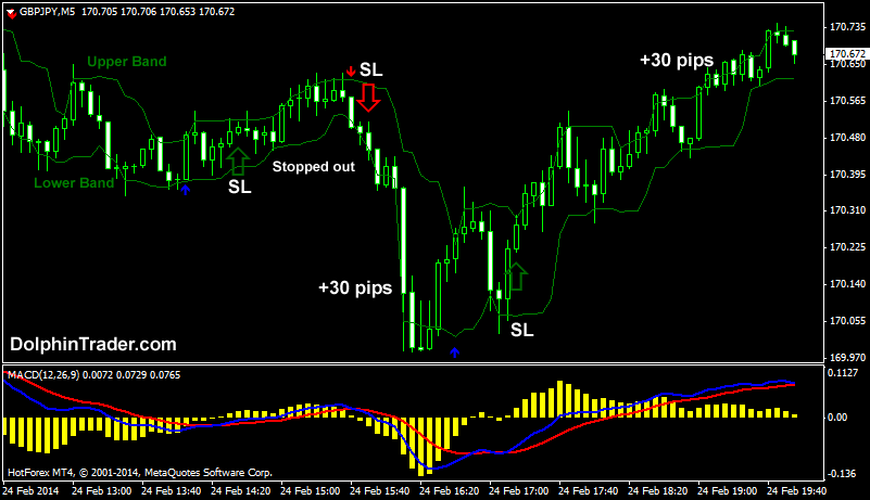 Working strategy forex