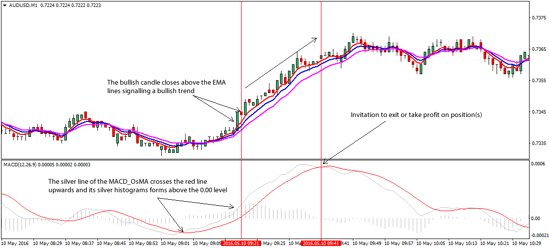 5 minute daily forex strategy