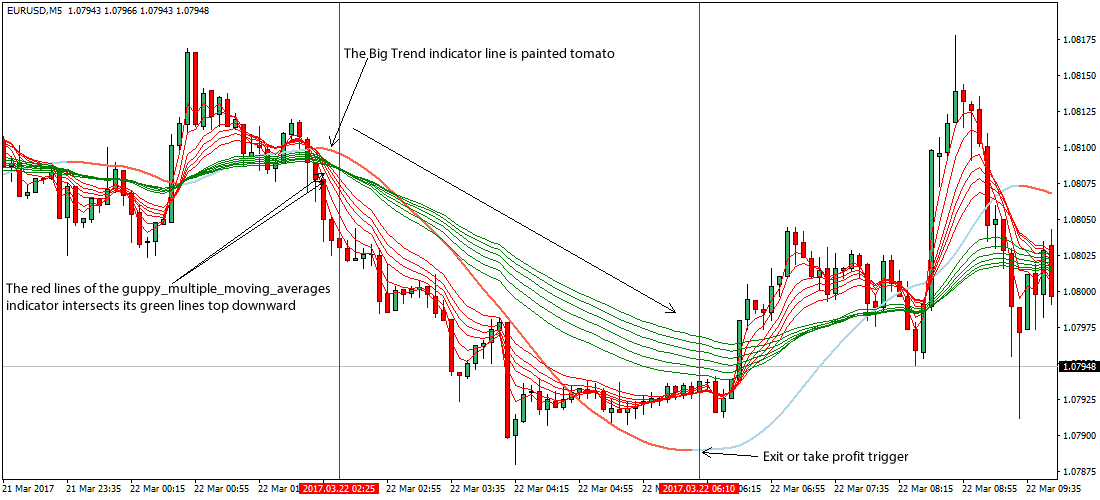 Trading strategies scalping