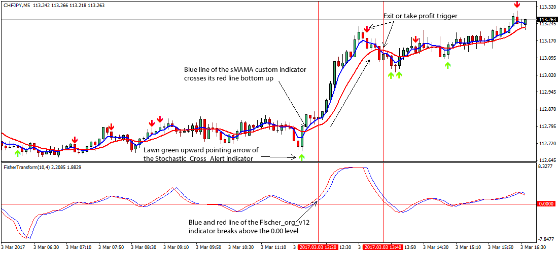 Forex open interest indicator