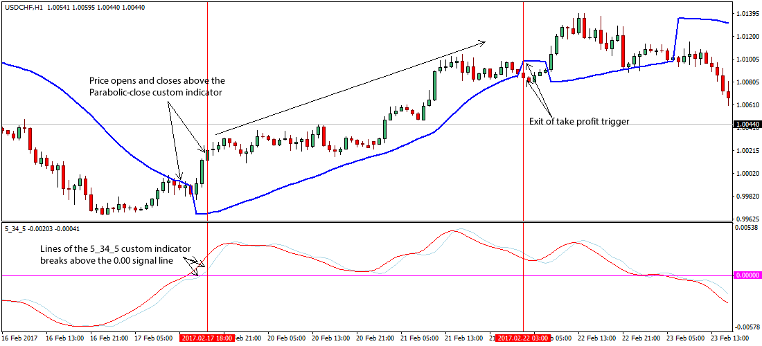 BuyandHold in Forex  Trading Strategy