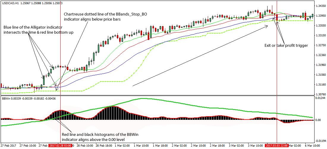 Алигатор в отдельном окне форекс курс йены к евро форекс